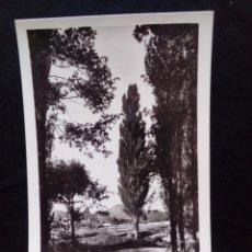 Postales: POSTAL FOTOGRÁFICA MOYA FOTO RENOM CIRCULADA. Lote 179519863