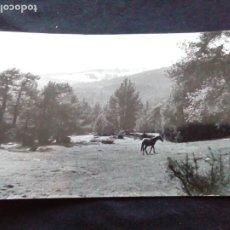 Postales: POSTAL FOTOGRÁFICA CAP DE REC. Lote 179530650