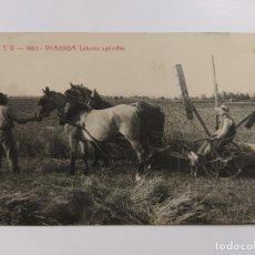 Postales: VILAJUIGA-LABORES AGRICOLAS-ATV 1663-VER REVERSO-(63.091). Lote 180033105