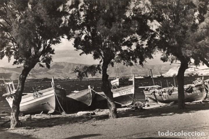 PORT DE LA SELVA. TAMARINDOS EN LA PLAYA. CAMPAÑÁ (Postales - España - Cataluña Antigua (hasta 1939))