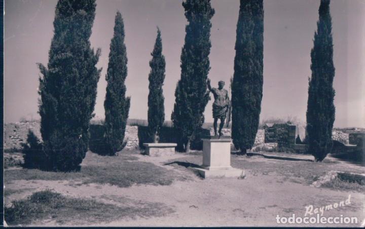 POSTAL TARRAGONA - PASEO ARQUEOLOGICO - RAYMOND - 29 (Postales - España - Cataluña Antigua (hasta 1939))