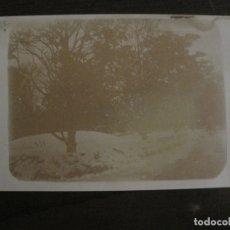 Postales: RIPOLL-POSTAL FOTOGRAFICA-VER FOTOS-(63.662). Lote 181613193