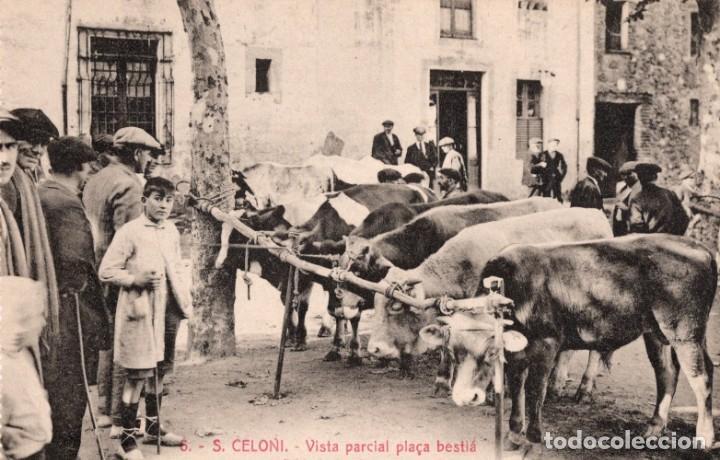 SANT CELONI. 6 VISTA PARCIAL PLAÇA BESTIÀ. ROISIN (Postales - España - Cataluña Antigua (hasta 1939))