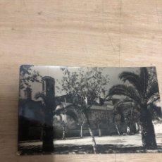 Postales: ARBOS. Lote 183684115
