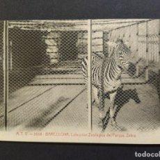 Postales: BARCELONA-COLECCION ZOOLOGICA DEL PARQUE-ZEBRA-ATV 2868-POSTAL ANTIGUA-(64.780). Lote 184393138