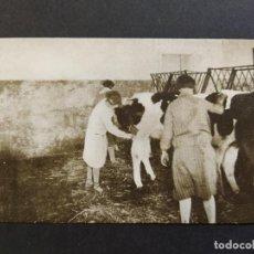 Postales: BARCELONA-JUNTA PROVINCIAL PROTECCION A LA INFANCIA-ESCUELA AGRICOLA BELLAPLANA-VER REVERSO-(65.001). Lote 184651906