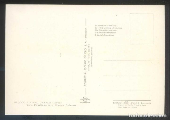 Postales: Sort. *Piragüismo en el Noguera Pallaresa* Ed. Fisa nº 3000. Nueva. - Foto 2 - 185717833