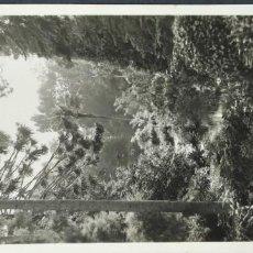 Postales: SINTRA - PARQUE DE MONSERRAT- ESPAÑAA9. Lote 192483091