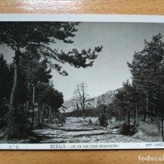 Postais: POSTAL FOTOGRÁFICA, BERGA, EL PI DE LES TRES BRANQUES. FOT. LUIGI. Nº6. Lote 193014945