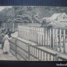 Postales: BARCELONA-PARQUE-EL ELEFANTE. Lote 194263223