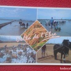 Postales: POSTAL POST CARD TARRAGONA DELTA DEL EBRO DE L´EBRE PLANTADA SEGADO SECADO ARROZ........DARP, SILAGO. Lote 194595307