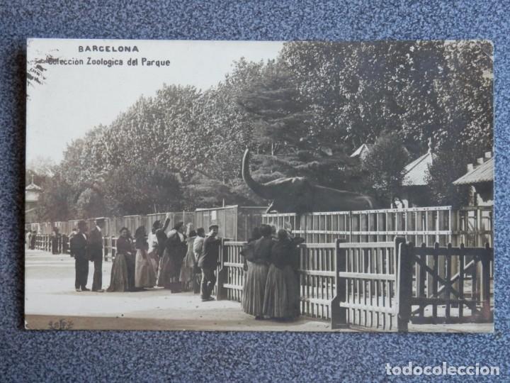 BARCELONA COLECCIÓN ZOOLÓGICA DEL PARQUE RARA POSTAL FOTOGRÁFICA CIRCULADA PPIOS SIGLO (Postales - España - Cataluña Antigua (hasta 1939))