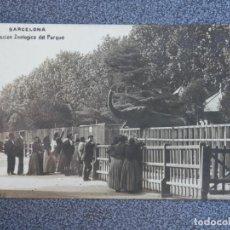 Postales: BARCELONA COLECCIÓN ZOOLÓGICA DEL PARQUE RARA POSTAL FOTOGRÁFICA CIRCULADA PPIOS SIGLO. Lote 194893028