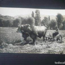 Postales: BELLVER DE CERDAÑA. PRADOS DE CODINA. (ED. FOTOGRAFIA CUYÁS). Lote 194987148
