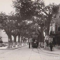 Postales: ARGENTONA, AVENIDA DEL CAUDILLO - FOTO GUELL - S/C. Lote 195429348