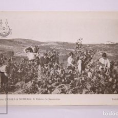 Postales: ANTIGUA POSTAL - 1. CASA CANALS & NUBIOLA. S. ESTEVE DE SASROVIRAS. VENDIMIANDO - CAVA. Lote 204241591