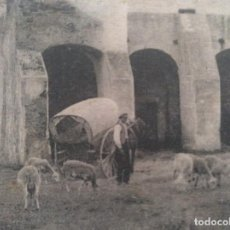 Cartoline: POSTAL PALAFRUGELL (GIRONA) PLAÇA DE LERMITA DE SANT SEBASTIA 1925. Lote 205842242