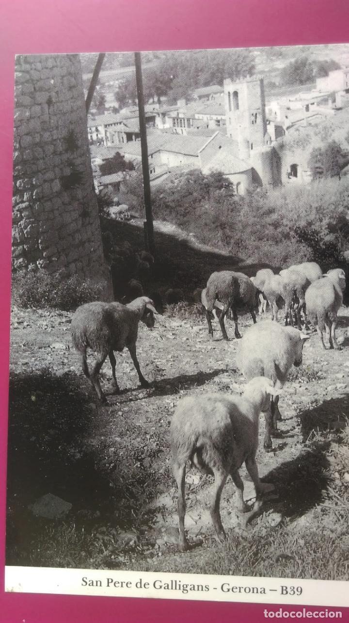 SAN PERE DE GALLIGANS, VISTA DESDE EL PASEO ARQUEOLOGICO GERONA GIRONA (Postales - España - Cataluña Moderna (desde 1940))
