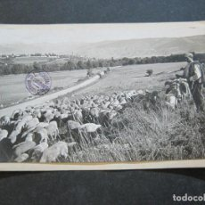 Postales: PUIGCERDA-REBAÑO DE OVEJAS-ARCHIVO ROISIN-FOTO PEGADA-POSTAL PROTOTIPO-FOTOGRAFICA-(71.187). Lote 207237362