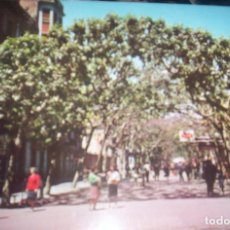 Postales: MANRESA - PASEO PEDRO III. Lote 209776797