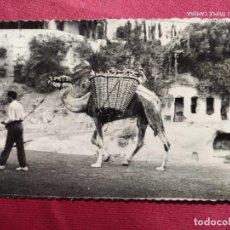 Postales: TARJETA POSTAL. 5. GRAN CANARIA. CARRETERA DE LA CALZADA. CUEVA LOS FRAILES. DOMINGUEZ. Lote 219295911