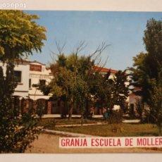 Postales: MOLLERUSSA - GRANJA ESCOLA AGRICOLA SINDICAL / ESCUELA - LLEIDA - LMX - PLLE6. Lote 222714821