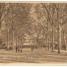 Postales: GERONA - EL PASSEIG CENTRAL DE LA DEVESA. ED. D.C.P. SIN CIRCULAR.. Lote 234502825