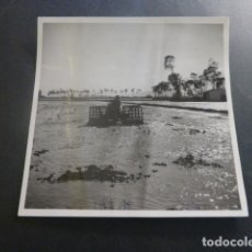 Postales: ISLA DE BUDA TARRAGONA SANT JAUME D´ENVEJA ARROZALES FOTOGRAFIA POR EL MARQUES DE SANTA MARIA VILLAR. Lote 247094415
