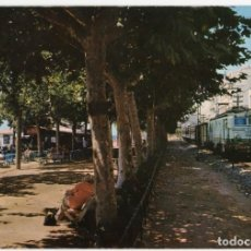 Cartoline: M02035 CALELLA DE MAR PASEO 1965 VIS COLOR Nº611 TREN FERROCARRIL VW BEETLE. Lote 254399565