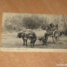 Cartes Postales: POSTAL DE CERDANYA. Lote 257497210