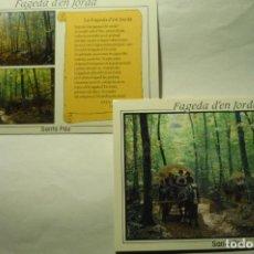 Postales: LOTE FAGEDA D´EN JORDA SANTA PAU CM. Lote 262998255