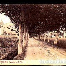 Postales: POSTAL PALAUTORDERA PASSEIG DEL PLA. Lote 277683588