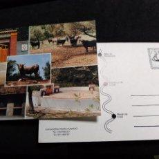 Postales: POSTAL * LLORET ,GANADERÍA PEDRO FUMADO , EL CHARNEGO *AÑO 1994. Lote 296612493