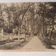 """Postales: 14. CAMPRODON( ALT.950 M)/ PASEIG DE LA """"FONT NOVA""""/ L.ROISIN/ ORIGINAL DE ÉPOCA/ SIN CIRCULAR. Lote 289519288"""