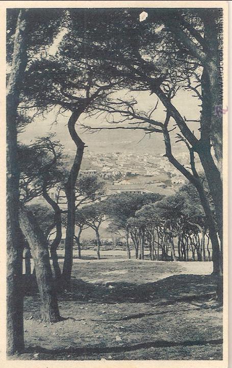 CEUTA, VISTA PARCIAL DESDE SAN ANTONIO - FOTOTIPIA HAUSER Y MENET Nº 6 - SIN CIRCULAR (Postales - España - Ceuta Antigua (hasta 1939))