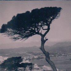Postales: POSTAL CEUTA - PAISAJE VISTO DESDE LOS PINARES DEL MONTE HACHO 13 - FOTO FRANCISCO RUBIO. Lote 78355057