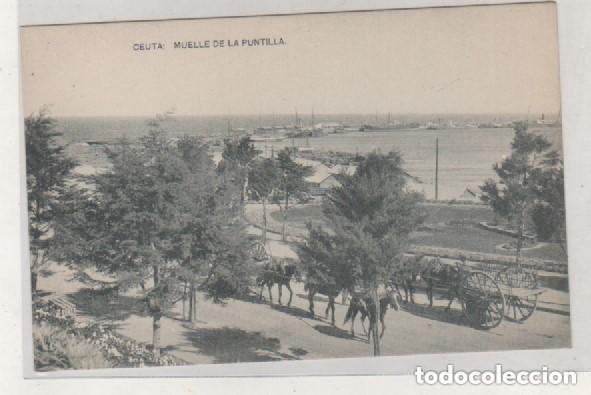 CEUTA MUELLE DE LA PUNTILLA FOTOTIPÍA HAUSER Y MENET. SIN CIRCULAR. (Postales - España - Ceuta Antigua (hasta 1939))