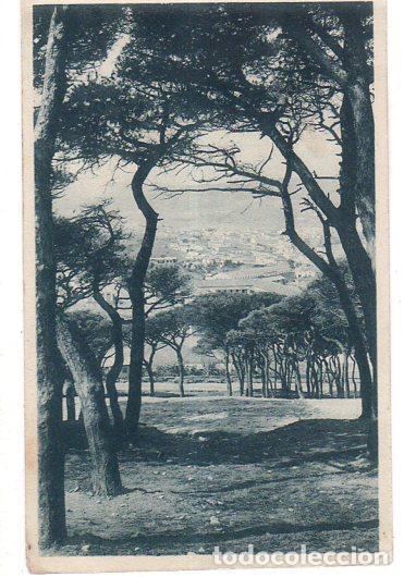 TARJETA POSTAL DE CEUTA. VISTA PARCIAL DESDE SAN ANTONIO. FOTOTIPIA HAUSER Y MENET. (Postales - España - Ceuta Antigua (hasta 1939))