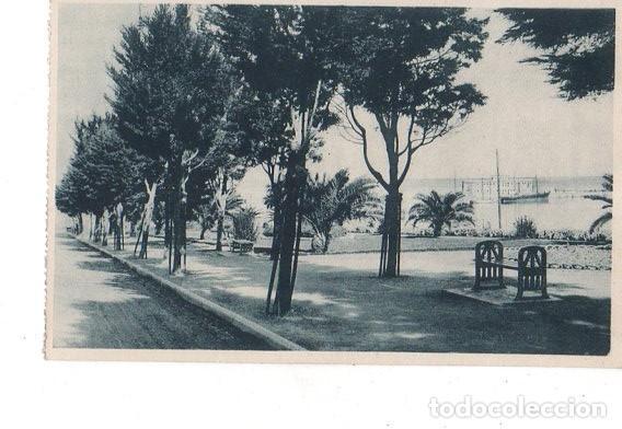 TARJETA POSTAL DE CEUTA. JARDINES DE LA HIPICA. (Postales - España - Ceuta Antigua (hasta 1939))