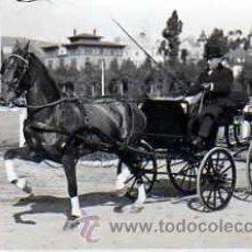 Postales: POSTAL FOTOGRAFICA COCHE DE CABALLOS . Lote 16080713
