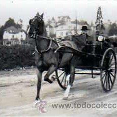 Postales: POSTAL FOTOGRAFICA COCHE DE CABALLOS . Lote 16080731