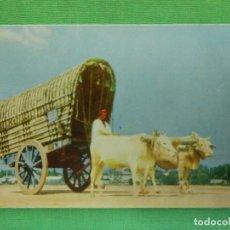 Postales: POSTAL - CARRO DE BUEYES - CEYLAN - CP-11 - BULLOCK CART - NE - NC. Lote 104323287