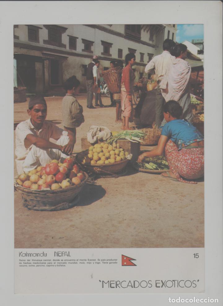 LOTE A-POSTAL PUBLICIDAD TAMAÑO GRANDE -24X16 MERCADOS EXOTICOS NEPAL AÑO 1973 (Postales - Postales Temáticas - Coches y Automóviles)
