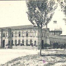 Postales: MADRID.MUSEO DE HISTORIA NATURAL. Lote 7888231