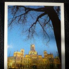 Postales: MADRID. SIN CIRCULAR. EDICIONES A.M.. Lote 10176600