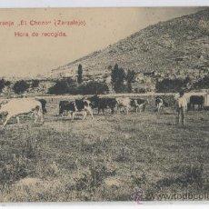 """Postales - TARJETA POSTAL DE ZARZALEJO GRANJA """"EL CHOCO"""" HORA DE RECOGIDA GANADERIA MADRID LACOSTE - 19417210"""