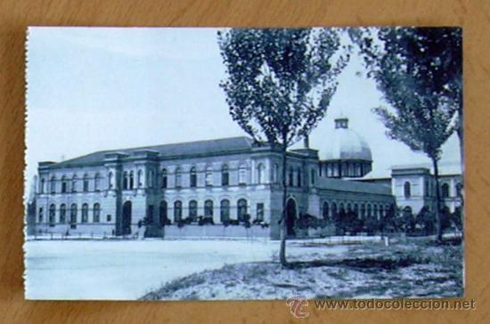 MADRID - MUSEO DE HISTORIA NATURAL (Postales - España - Comunidad de Madrid Antigua (hasta 1939))