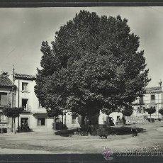 Postales: RASCAFRIA - 3- OLMO DE LA PLAZA - HELIOTIPIA ARTISTICA - (9236). Lote 30692915