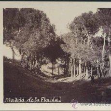 Postales: MADRID.- DE LA FLORIDA (PINAR). Lote 33522999