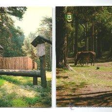 Postales: 2 POSTALES DE CERDEDILLA (MADRID) 1981. Lote 36972414